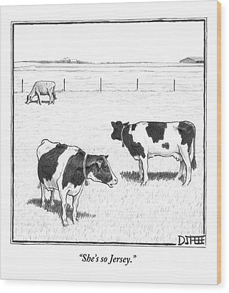 Two Averagely Spotted Cows Looking At A Plain Cow Wood Print by Matthew Diffee