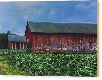 Two Barns Ready Wood Print by Rick Bragan