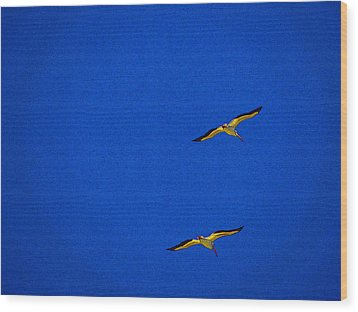 Wood Print featuring the photograph Two Blue by Tom DiFrancesca
