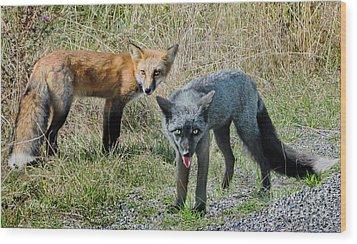 Two Fox Seattle Wood Print by Jennie Breeze