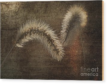 Two Grass Flowers Wood Print by Heiko Koehrer-Wagner