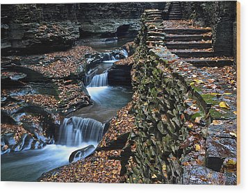 Two Kinds Of Steps Wood Print by Frozen in Time Fine Art Photography
