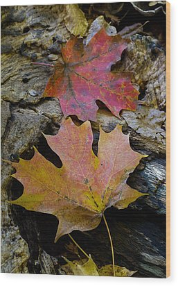 Two Leaves Wood Print by Larry Bohlin