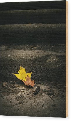 Two Leaves On A Staircase Wood Print