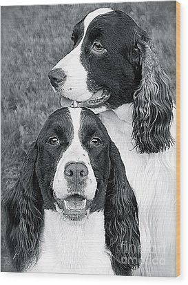Wood Print featuring the photograph Two Of A Kind by Barbara Dudley
