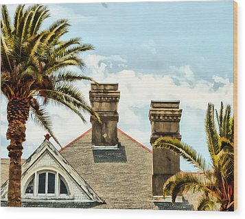 Two Palms Two Chimneys And Gable Wood Print by James Stough