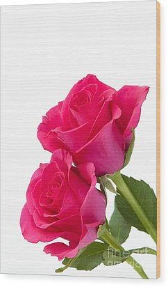 Two Roses Wood Print by Anne Gilbert