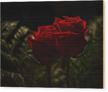 Two Roses For Our Anniversary Wood Print by Ronda Broatch