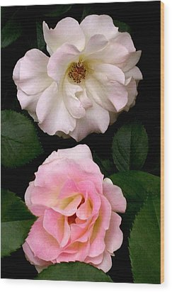'two Roses' Wood Print