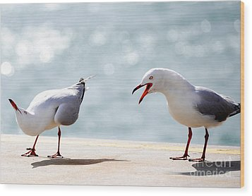 Two Seagulls Wood Print by Yew Kwang