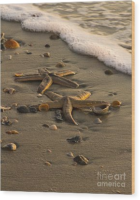 Two Stars Wood Print by Carrie Cranwill
