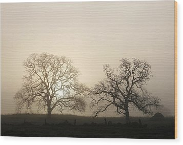 Two Trees In Fog Wood Print
