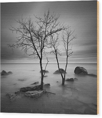 Two Trees Walking Wood Print