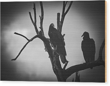 Wood Print featuring the photograph Two Vultures by Bradley R Youngberg