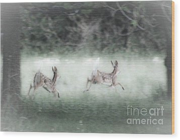 Wood Print featuring the photograph Two Whitetail Fawns Running by Jim Lepard