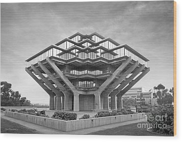University Of California San Diego Geisel Library  Wood Print by University Icons