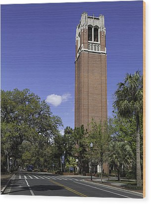 Uf Century Tower And Newell Drive Wood Print by Lynn Palmer