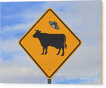 Ufo Cattle Crossing Sign In New Mexico Wood Print by Catherine Sherman