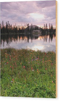 Uinta Wildflowers Wood Print by Johnny Adolphson