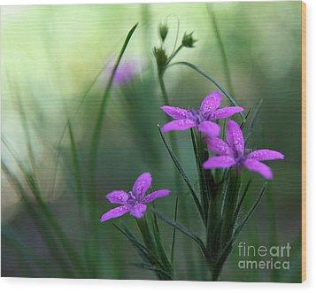 Ultra Violet Wood Print