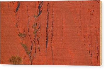 Uluru 3 Wood Print by Evelyn Tambour