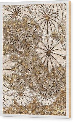 Umbrellas And Urchins Wood Print by Liz  Alderdice