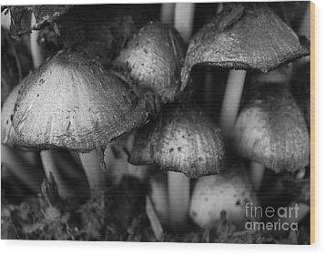 Umbrellas Wood Print by Susan Hernandez