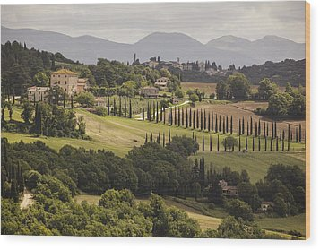 Wood Print featuring the photograph Umbria by Uri Baruch