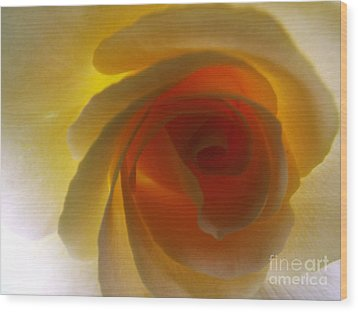 Wood Print featuring the photograph Unaltered Rose by Robyn King
