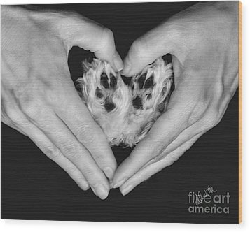 Unconditional Love Wood Print by Andrea Auletta