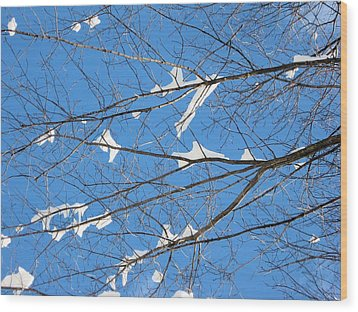 Under Snowy Branches 2 Wood Print by Dennis Lundell