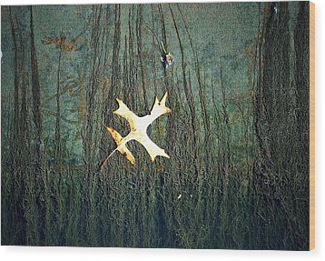 Under The Current Wood Print by Lisa Plymell