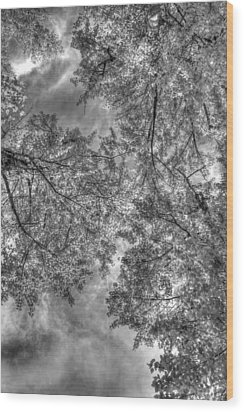 Wood Print featuring the photograph Under The Gray  by Kevin Bone