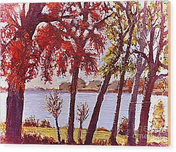 Under The Maple Along The Charles River Wood Print by Rita Brown