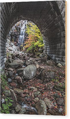 Under The Road Wood Print by Jon Glaser