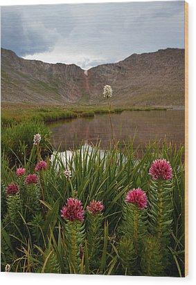 Under The Summit Wood Print by Jim Garrison