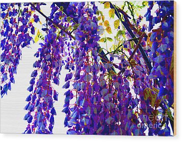 Under The Wisteria Wood Print by Alys Caviness-Gober