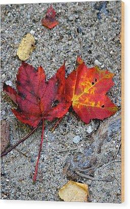 Underfoot Wood Print