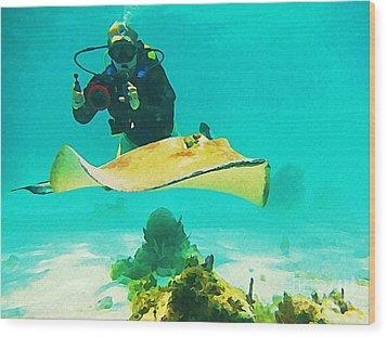 Underwater Photographer And Stingray Wood Print by John Malone Halifax Artist