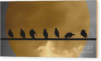 Unity Is Strength Wood Print by France Laliberte