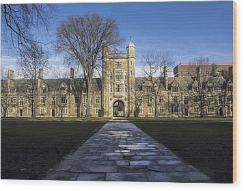 University Of Michigan Campus Wood Print