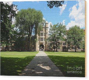 University Of Michigan Law Quad Wood Print by Phil Perkins
