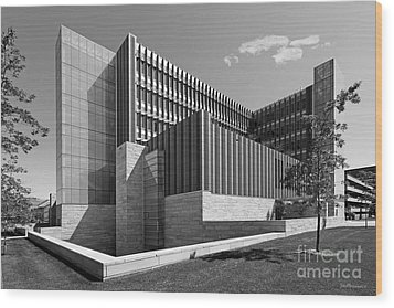 University Of Michigan Ross School Of Business Wood Print by University Icons
