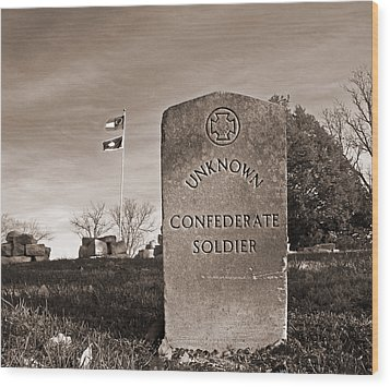 Unknown Soldier Wood Print by Steven  Michael