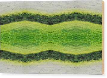 Unnatural 2.1 Wood Print by Giovanni Cafagna