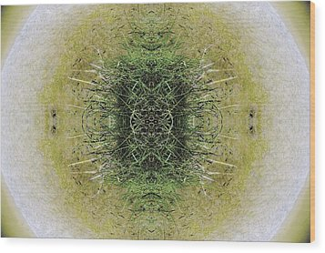 Unnatural 6.1 Wood Print by Giovanni Cafagna