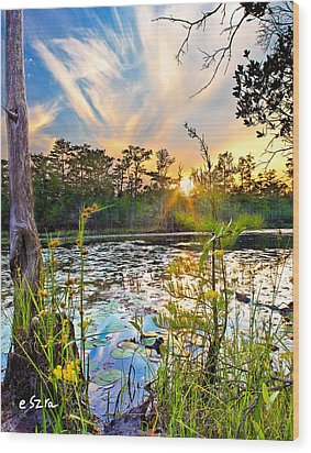 Wood Print featuring the photograph Yellow Wild Flowers Swamp Sunset Blue Sky Reflection Art Prints by Eszra