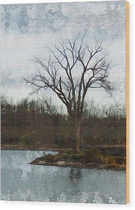Until Spring Wood Print by Jack Zulli
