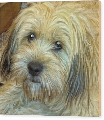 Wood Print featuring the painting Chewy by Michael Pickett