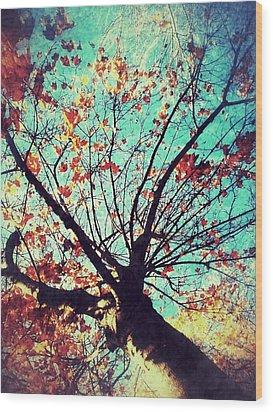 Untitled Tree Web Wood Print by Juliann Sweet